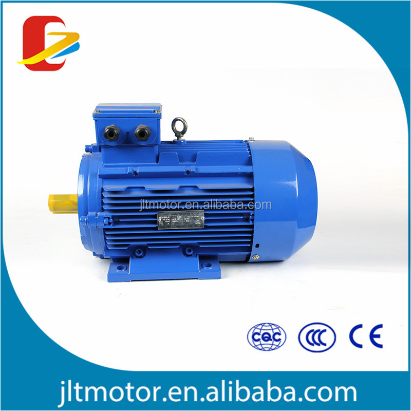 Three Phase Electric Motor AC