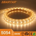 220v/110V High voltage LED Flexible Strips 60leds/m SMD5054