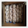 Factory outlet fresh white garlic on hot sale New crop natural cheap jinxiang