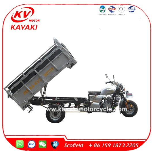DIY 150CC passenger and cargo Multifunction tricycle