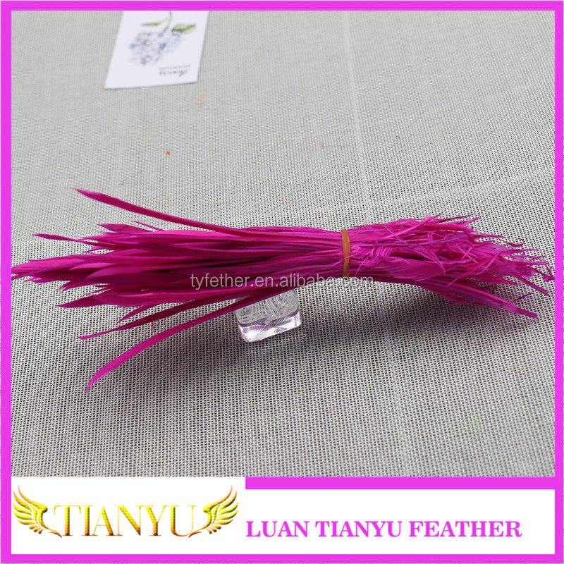 Factory direct customized goose biot feathers for promotion gifts