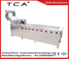 China professional fruit and vegetable washing/cleaning/drying production line