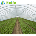 Hot galvanized steel pipe Material and Large Size used greenhouse frames for sale