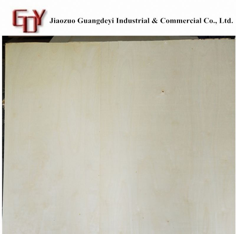 Best price film face plyoowd/container bamboo plywood