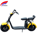 Casual double electric scooter 1000W, with LCD instrument, removable battery, a variety of colors optional