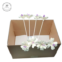 Stocked and Retail handmade 8pcs/box decoration sola umbrella dry flower reed diffuser accessories