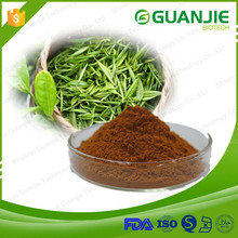 Guanjie Supply High Quality White Tea Extract