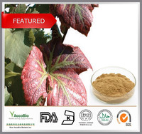 Top quality natural Red vine leaf extract 4:1 10:1 20:1