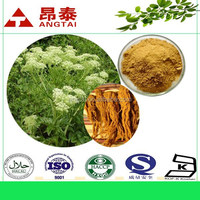 Hot Sale Women Menopause Natural Herbal Extract Black Cohosh Extract 2.5%Triterpene glycosides