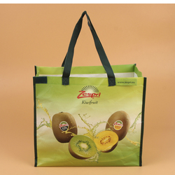 Recyclable eco-friendly customized laminated pp non woven shopping bag