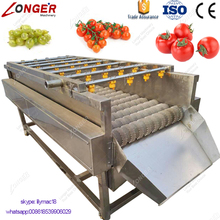 2017 Hot Sale Industrial Fruit and Vegetables Washer Machine Price