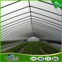 China wholesale modern design plastics film greenhouse for vegetable