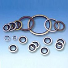 China manufacturer high quality rubber metal bonded seals