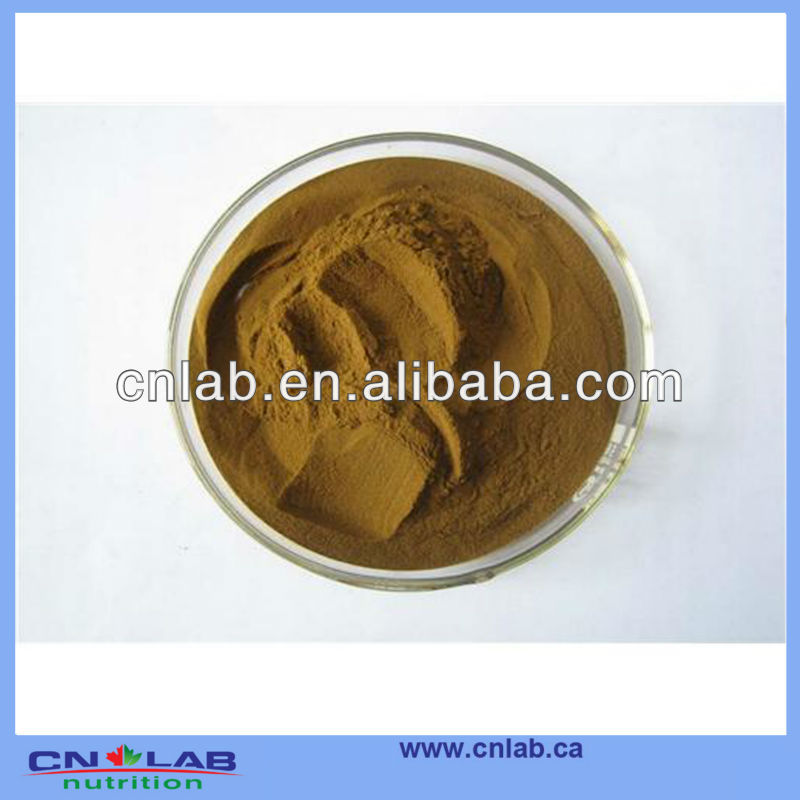 Manufacturer Direct Supply Organic Top Quality Natural Astragalus Menbranaceus Extract