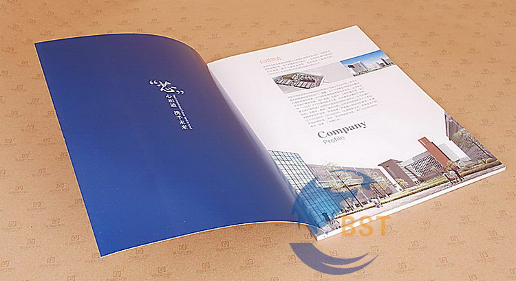 Contemporary hot-sale guangzhou catalogues printing