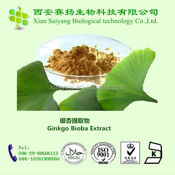 Ginkgo Biloba Extract/flavone Glycosides Terpene Lactone