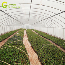 Cheap greenhouse commercial greenhouse for sale