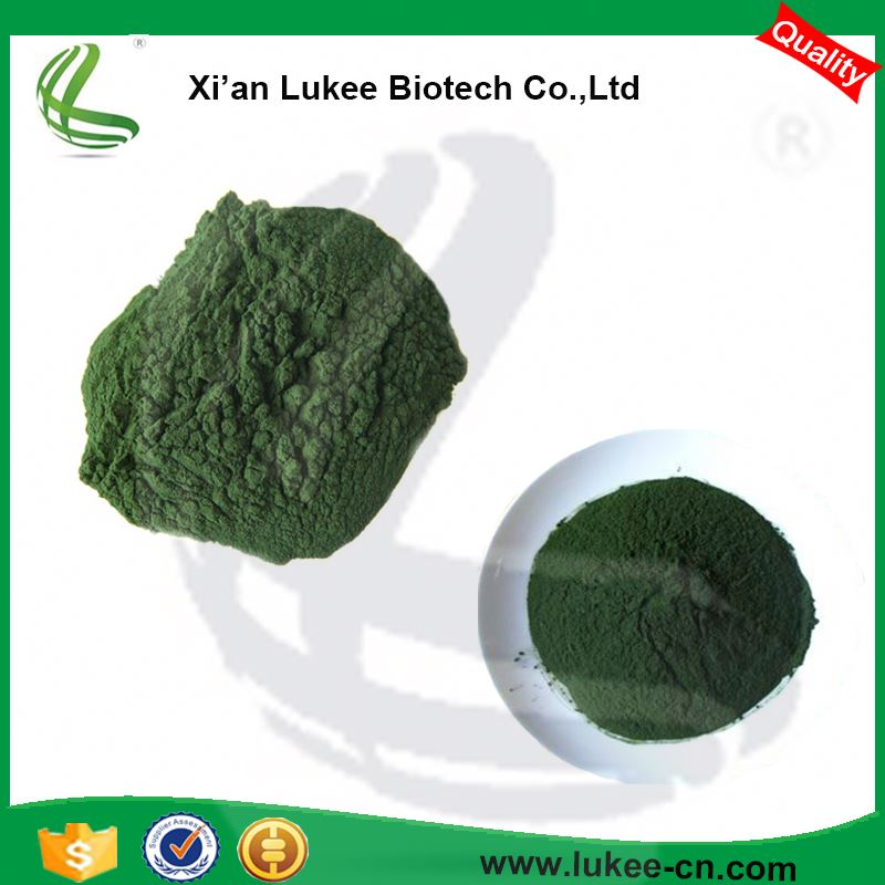 Best Price Of 100% Organic Spirulina Powder, Spirulina Extract, Bulk Spirulina Manufacturer