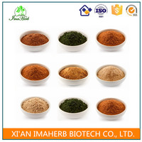 GMP Manufacture Halal Approved cimicifuga racemosa extract powder