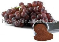 grape seed extract 95% pr anthocyanidins