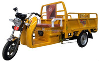 3 wheels Strong Power Electric Cargo Tricycle in Southeast