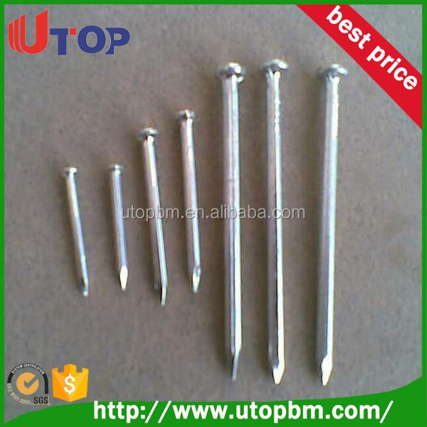 Construction steel nails / Common stell nail from professional nails factory