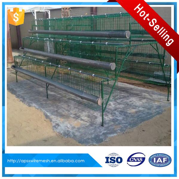 best sale hen cage used for chicken coop