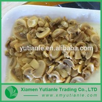 Wholesale new age products synthetic mushroom