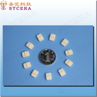 STCERA Alumina ceramic parts, custom ceramic technic parts
