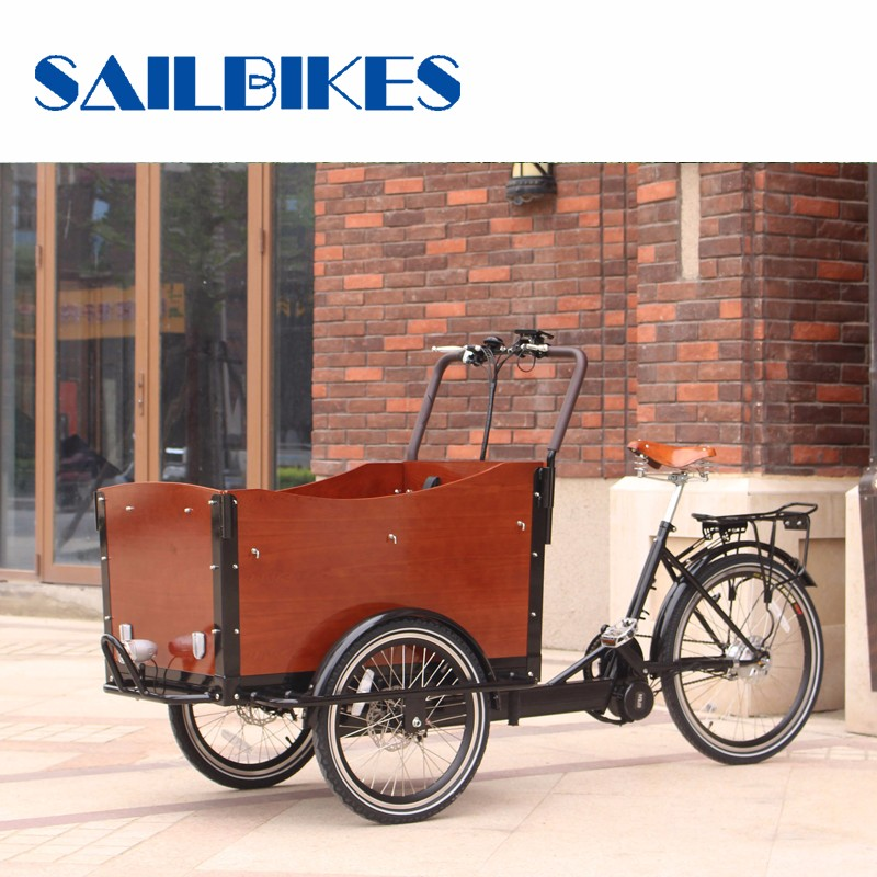 Front Loading Three Wheel Electric Cargo Bike For Sale