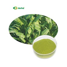 Organic Freeze Dried Dehydrated Spinach Powder