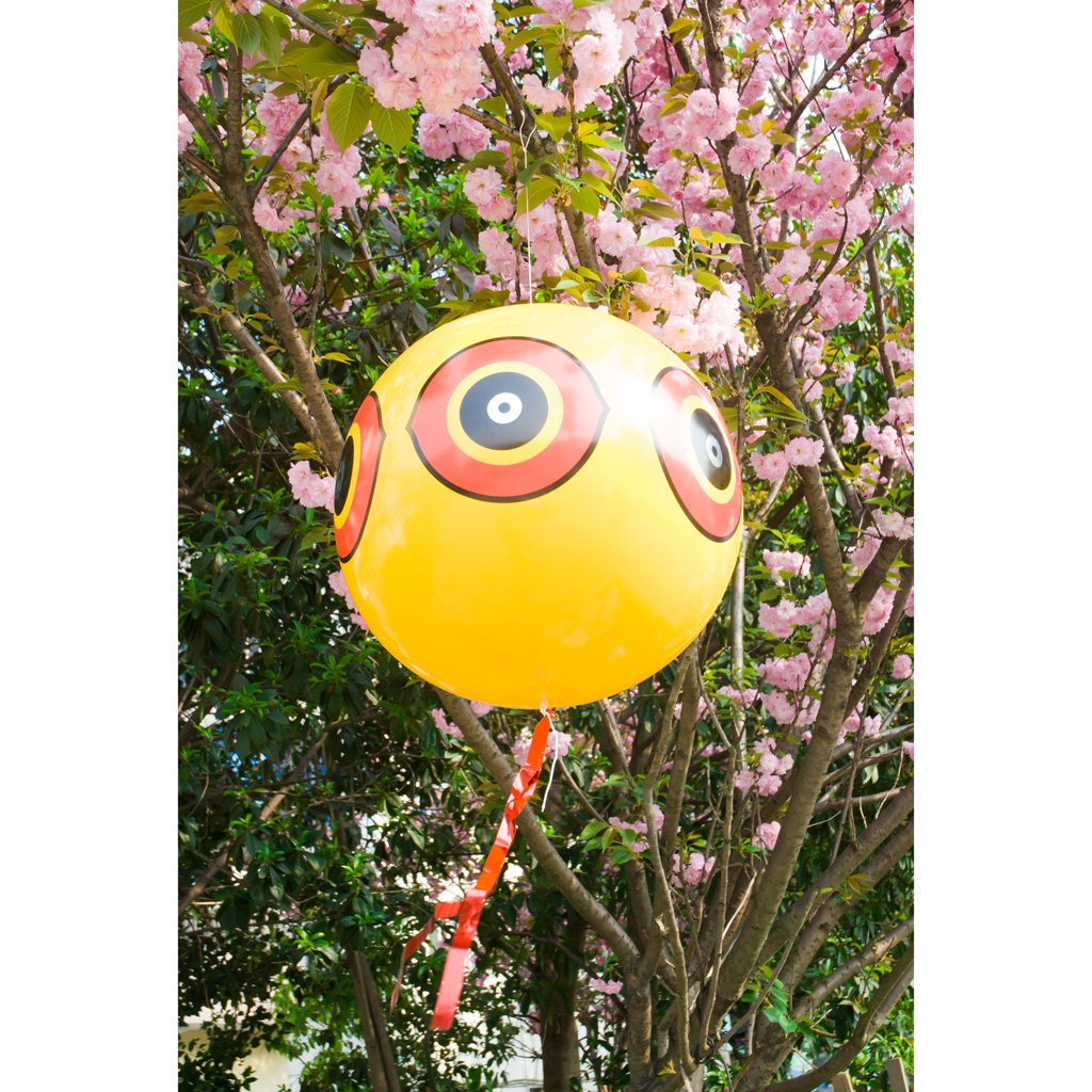 Predator Eye Balloon Bird/Pigeon Scarer balloon