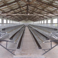 Price Chicken Breeding Battery Cages