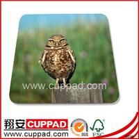 UV,lamination mdf cork table mat,placemats,coaster with round corner