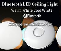 new innovative products bluetooth height adjustable ceiling light
