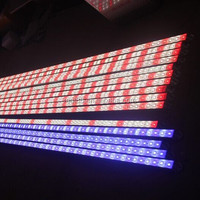 "24"" Stunner LED Strips Aquarium Lights.IP66.25W.12VDC/24VDC.5730 LED.72 LEDs/meter.6500K.shenzhen factory"