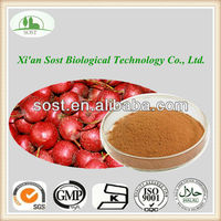 GMP Factory Supply Pure Hawthorn Berry/Leaf Extract