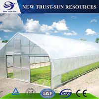 High quality single layer tunnel plastic film greenhouse for vegetable growing