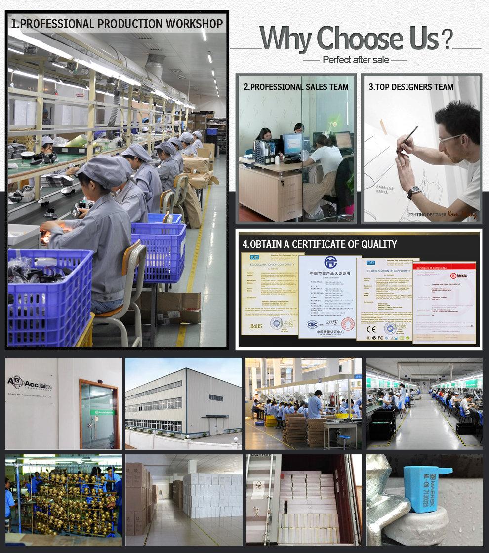 Shanghai Acclaim Industries Co., Ltd. - pendant lamp,crystal light