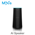 OEM/ODM Smart Home Wifi BT Alexa Speaker