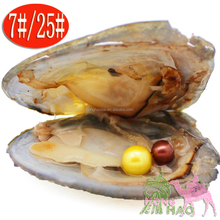 100pcs Akoya oysters, AAAA twins, pink, white, blue, black, 6-7mm, pearl, vacuum packing, pearl oyster DIY fittings