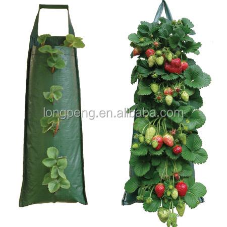 Hanging Sacs De Plantes Fraises Suspendue Fleur Sac