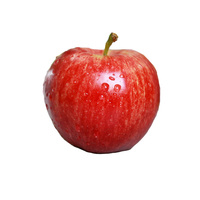 Good quality of apple fruit