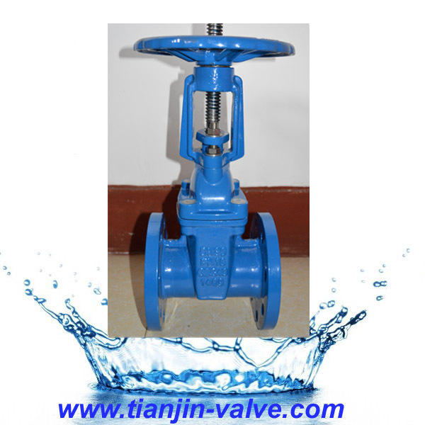 Cast Iron BS renewable/replace seats gate valve