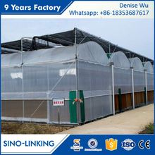 SINOLINKING Low cost UV treated rolling benches for commercial greenhouse benches for vegetable fruits