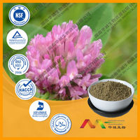 Pure Natural Red Clover Extract Powder