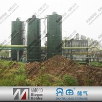 2015 Hot selling biogas digester for food waste and animal waste from China
