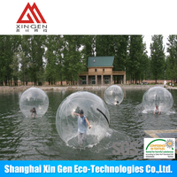 Transparent TPU walking ball in water park