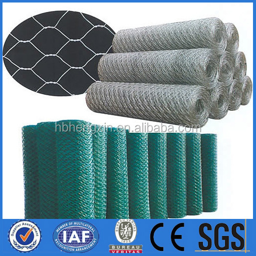 galvanised poultry wire mesh/fish pot wire/galvanized net
