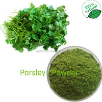GMP Manufacture Water-soluble Coriander Extract/Water-soluble Coriander Herb Extract